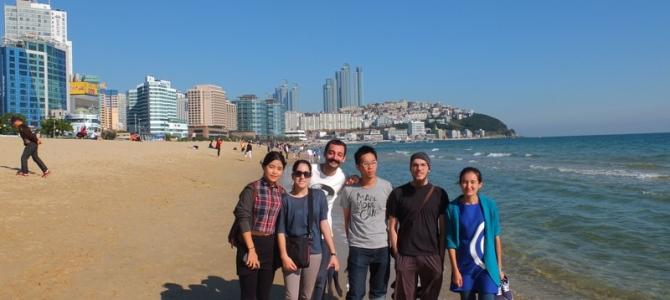 Busan gezisi ve Fireworks Festivali