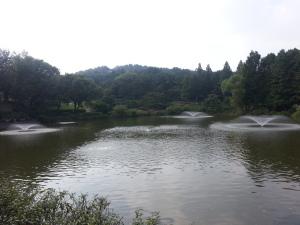 Pohang Jigok