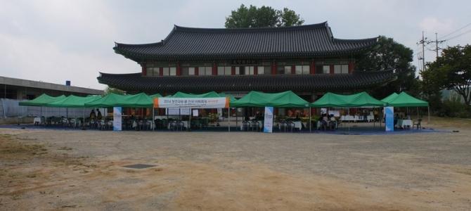 Yongjusa Tapınağı ve Eşli Go Turnuvası [Tapınak Kalması – 2]